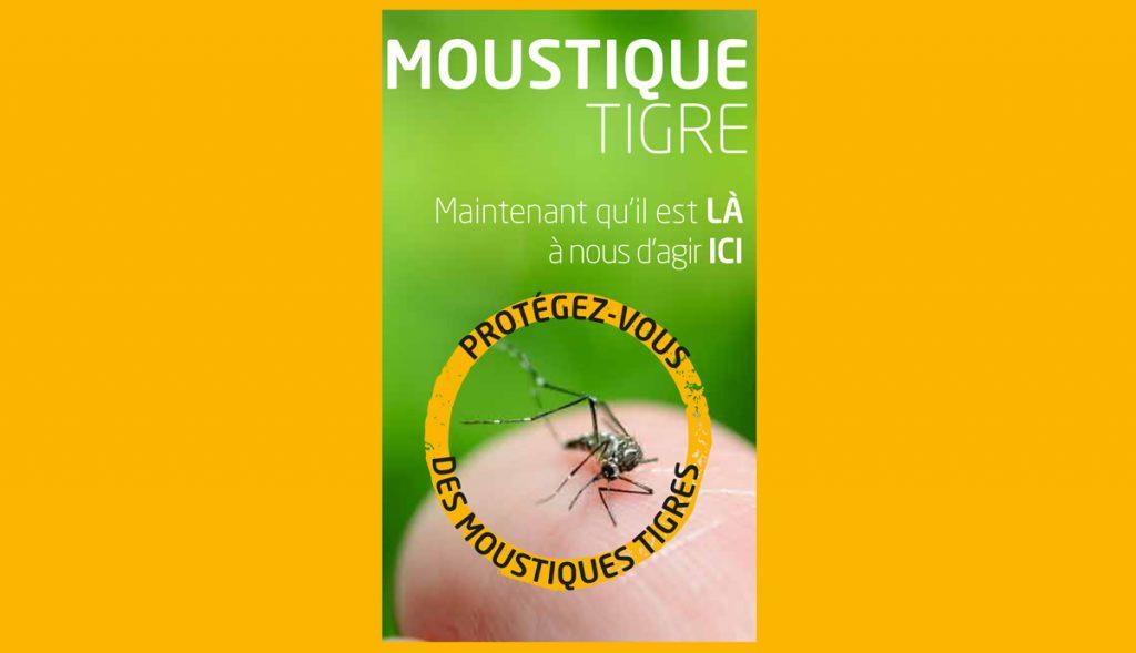 Moustique Tigre Encart